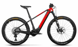 Rotwild R.X750 (HT) PRO 2021